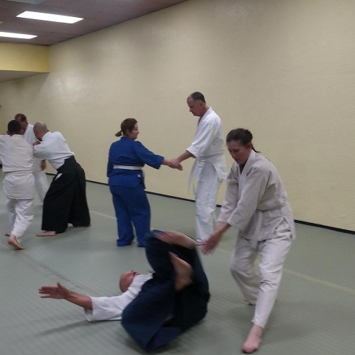 people performing aikido in el paso